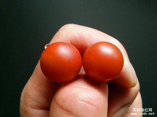 保山南红玛瑙图片_什么样的保山南红珠子收藏价值高 - 苏州南红网